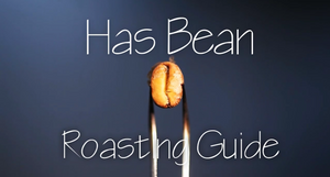 Roasting Guide
