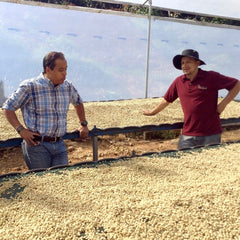 Costa Rica Puente Tarrazú Finca El Potrero Black Honey Bourbon