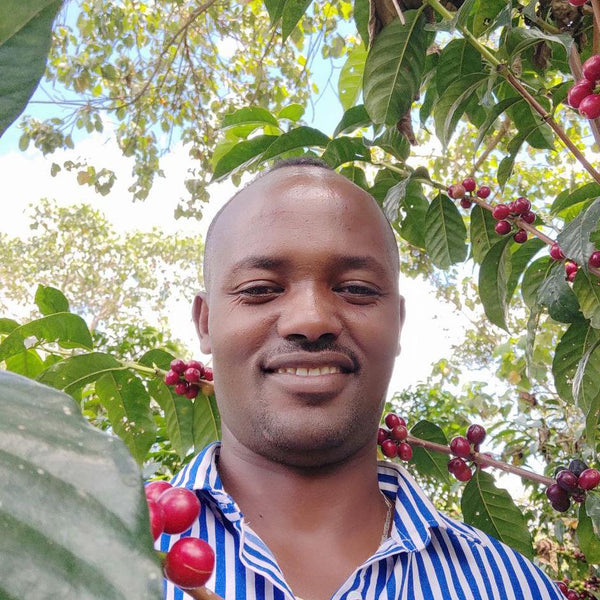 Gemeda Elias Dube at the Gemeda Elias Dube farm in Shakiso, in the West Guji zone of Ethiopia | Hasbean.co.uk Specialty coffee freshly roasted in Staffordshire