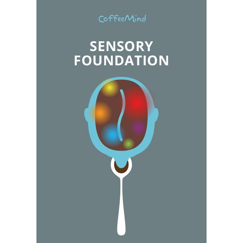 Sensory Foundation