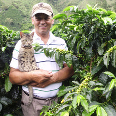 Colombia El Meridiano Rioblanco SC Decaffeinated