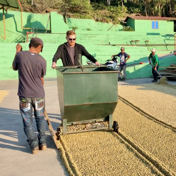 Stephen Leighton. El Limon, Palencia, Guatemala | Hasbean.co.uk