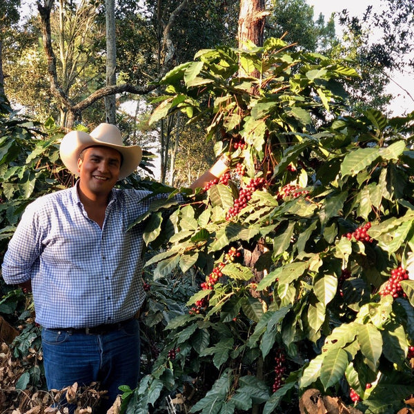 Betio Reyes. El Limon, Palencia, Guatemala | Hasbean.co.uk