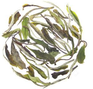 Waterloo Tea White Peony (Bai Mu Dan). Hasbean.co.uk