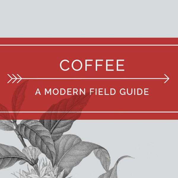 Coffee: A Modern Field Guide