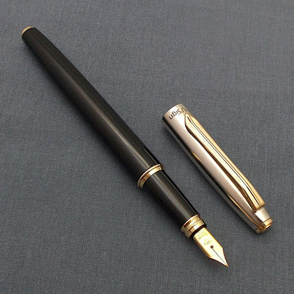 V'Sign Stride Black Fountain Pen with Vintage Swan (Ambitious) Nib