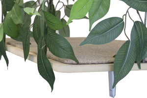 Curved Cat Canopy (Set of Two), Zen Green
