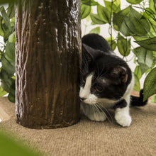 Load image into Gallery viewer, 4ft Natural Cat Tree, Zen Green