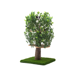 4ft Natural Cat Tree, Zen Green