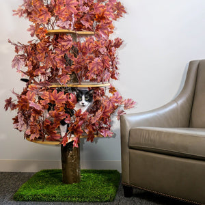 Large Square Luxury Cat Tree Plum Autumn