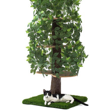 Load image into Gallery viewer, Large Square Luxury Cat Tree Evergreen