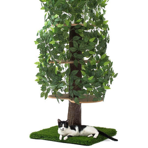 5ft Natural Cat Tree, Zen Green Square