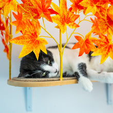 Load image into Gallery viewer, Interchangeable Leaves Curved Cat Canopy (Set of Two), Orange Blaze