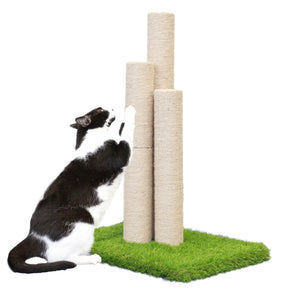Skyline Scratching Post