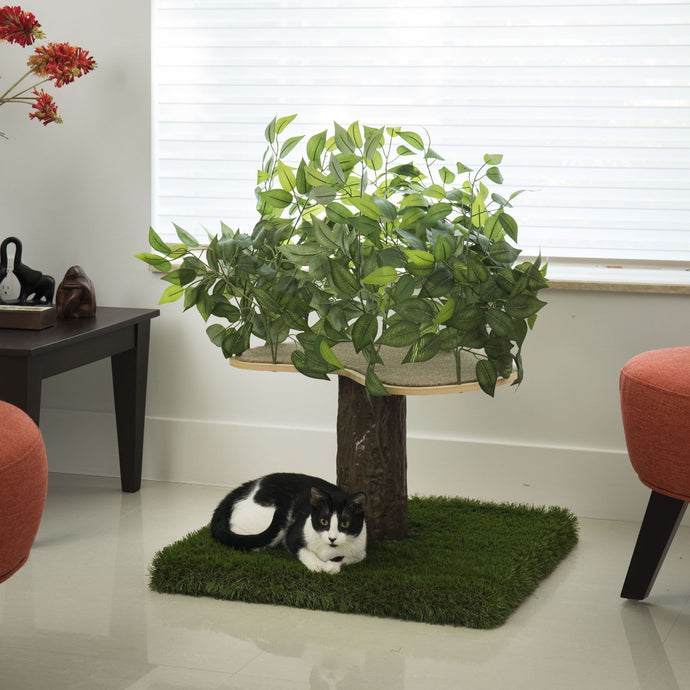 2ft Natural Cat Tree, Zen Green