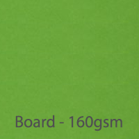 bright board parrot green