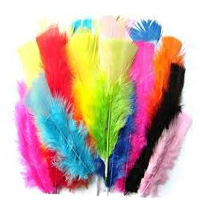 Feathers - Large Turkey - Single Colour 10's