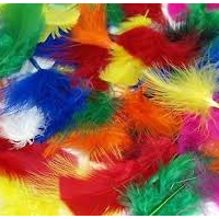mixed feathers