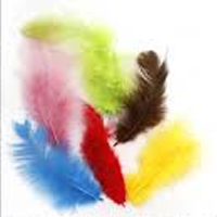 Feathers - Small Poultry - Single Colour 10's