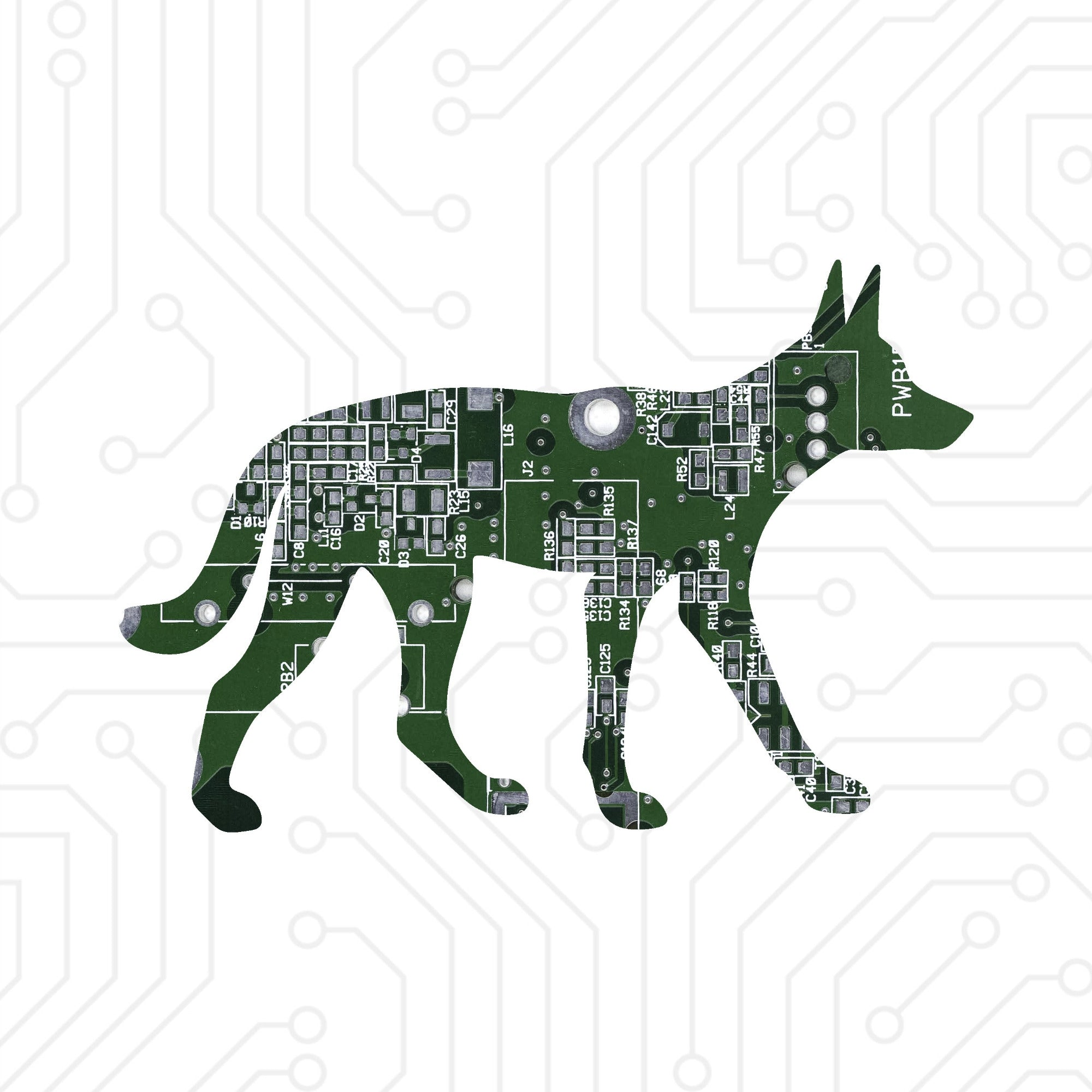 Circuit Board Dingo - TechWears Ltd