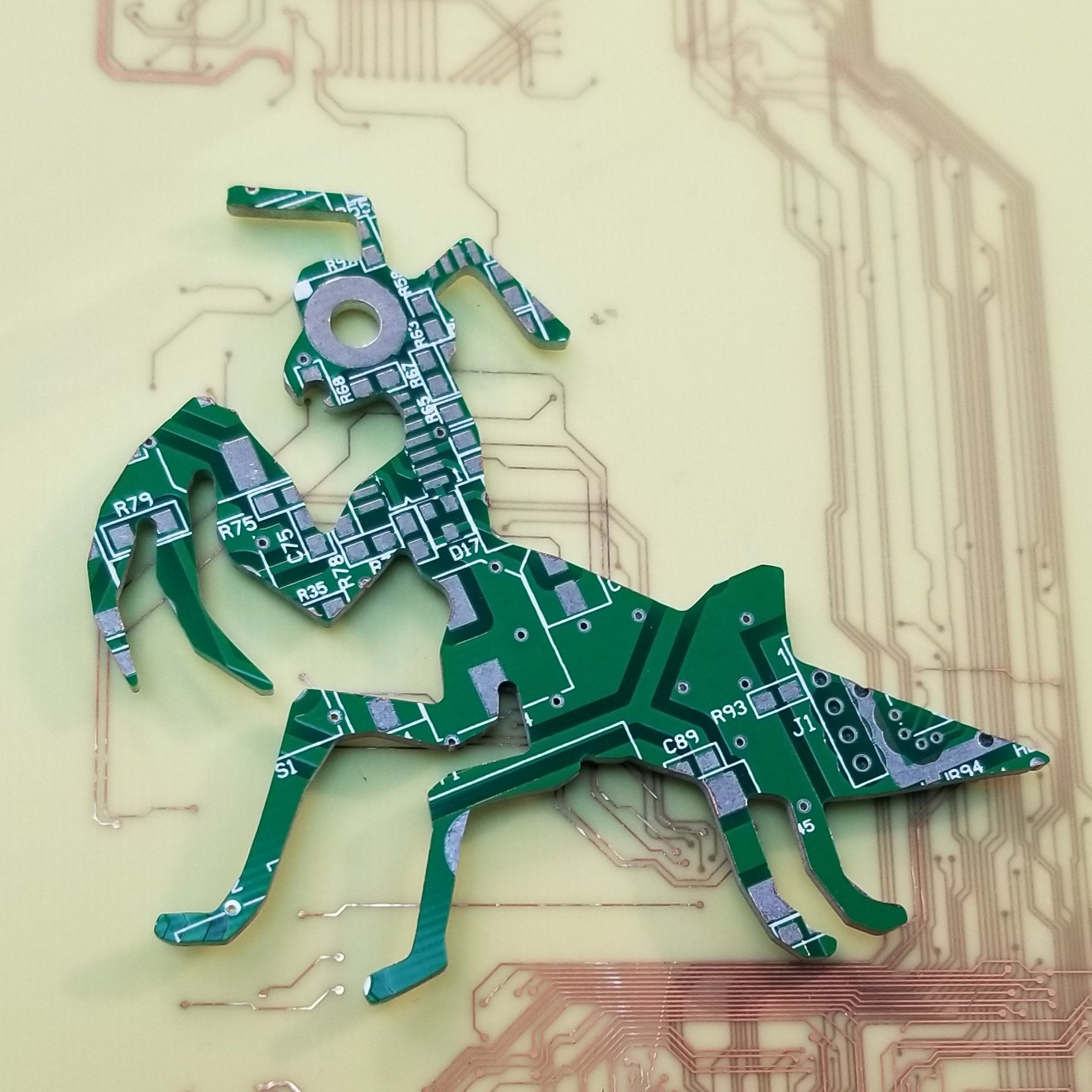 Circuit Board Praying Mantis - TechWears Ltd