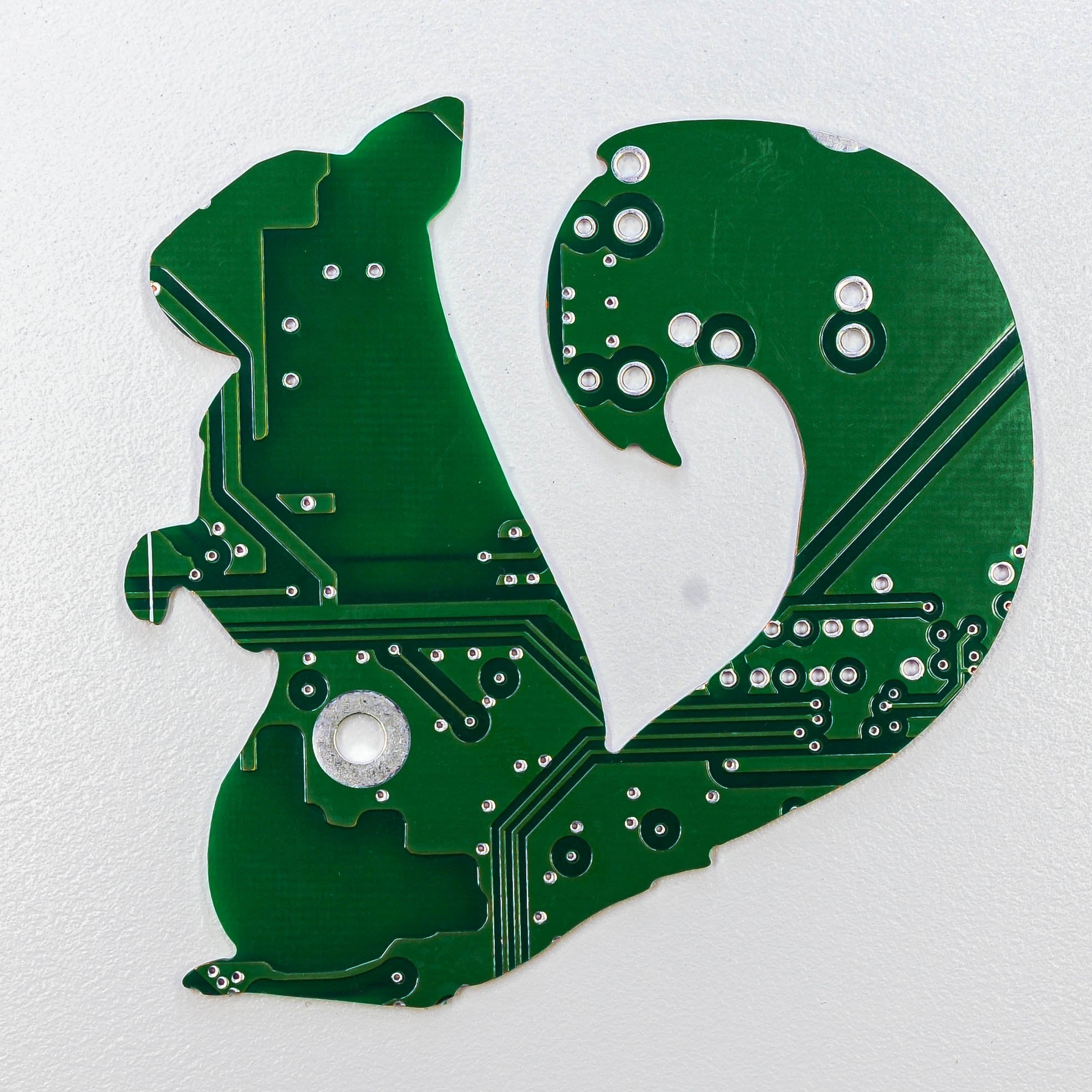 Circuit Board Squirrel - TechWears Ltd