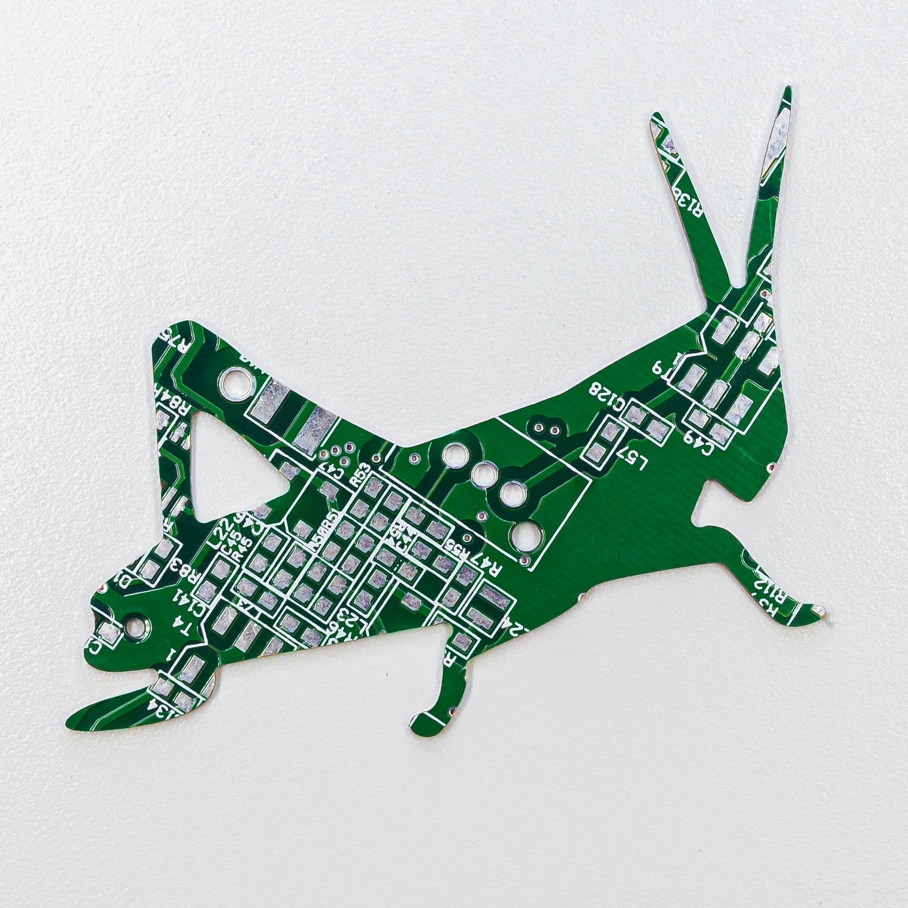 Circuit Board Grasshopper - TechWears Ltd