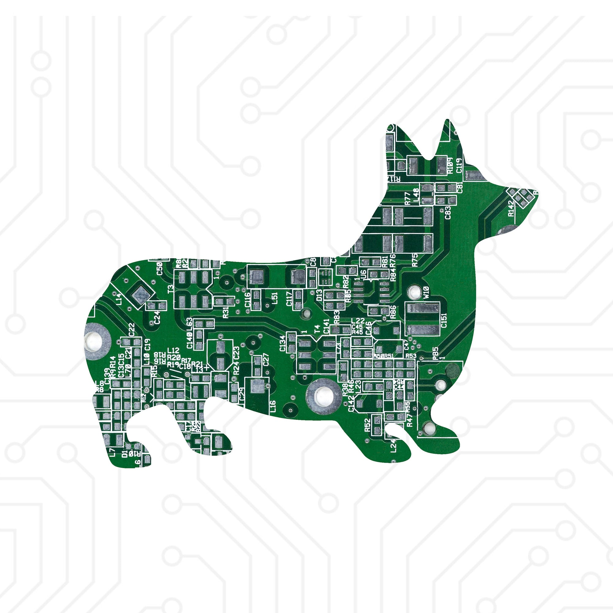 Circuit Board Corgi - TechWears Ltd