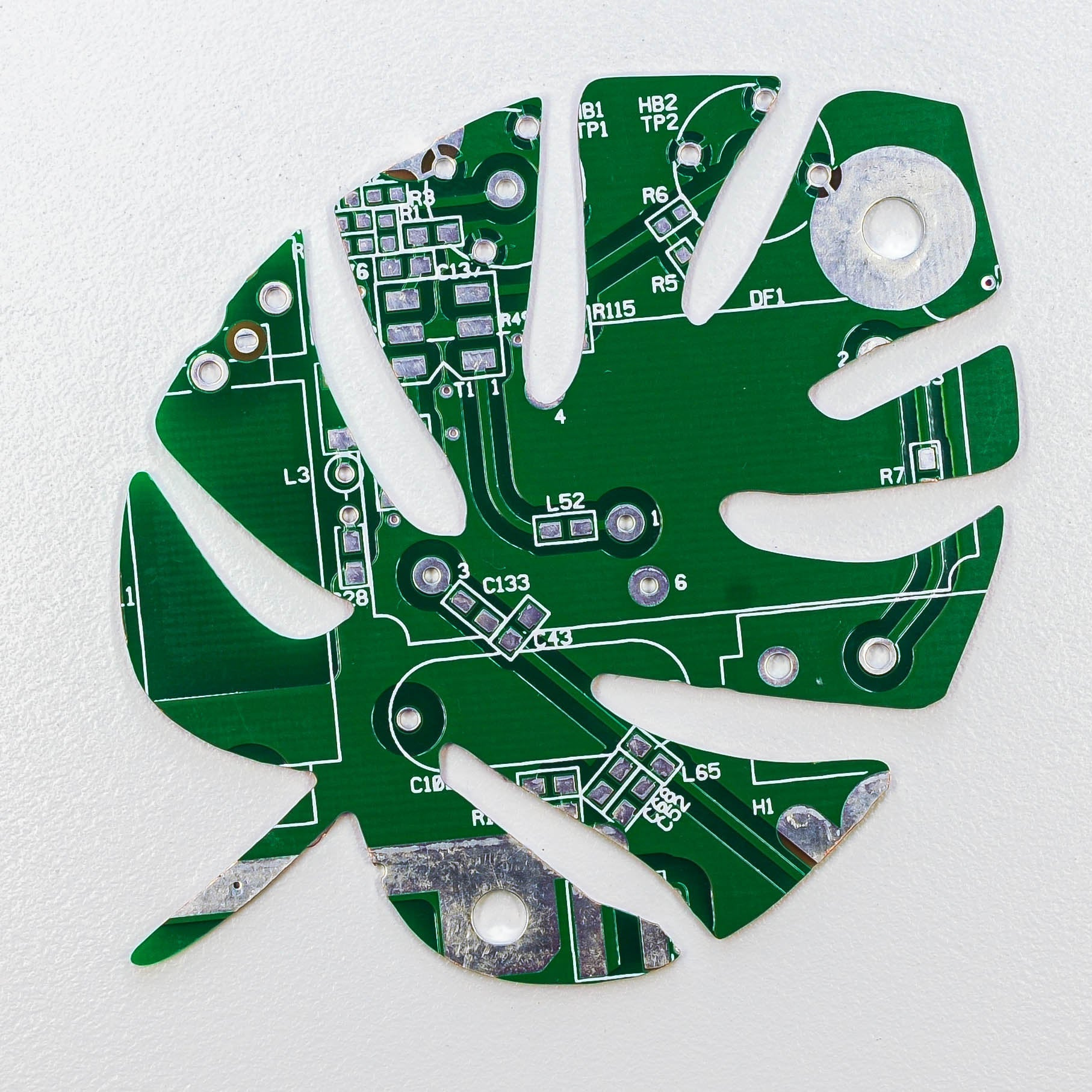 Circuit Board Monstera Deliciosa Leaf - TechWears Ltd