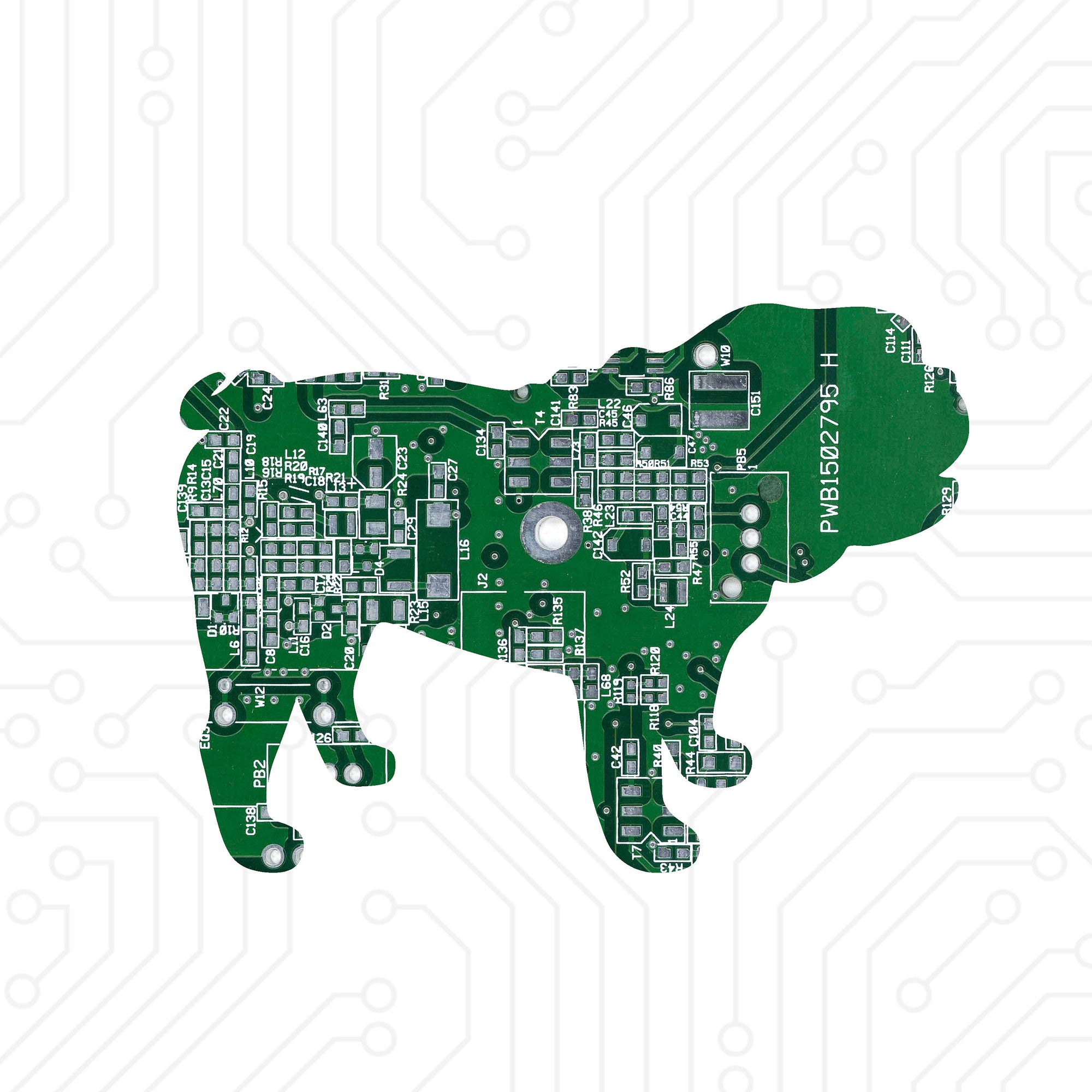 Circuit Board Bulldog - TechWears Ltd