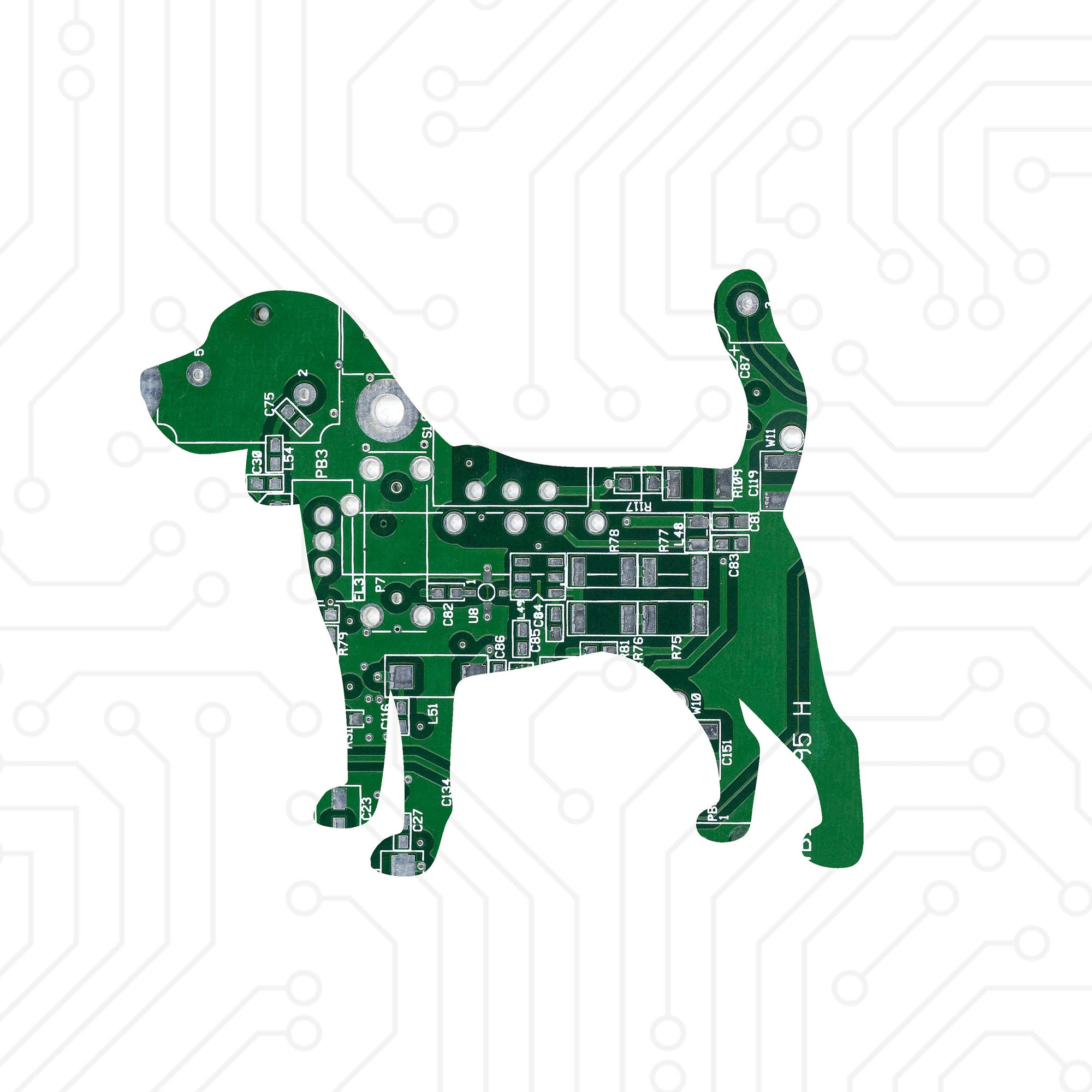 Circuit Board Beagle - TechWears Ltd