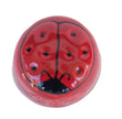 Ladybug Liptiful Facial Toning Tool for Kids, Teens, and Adults