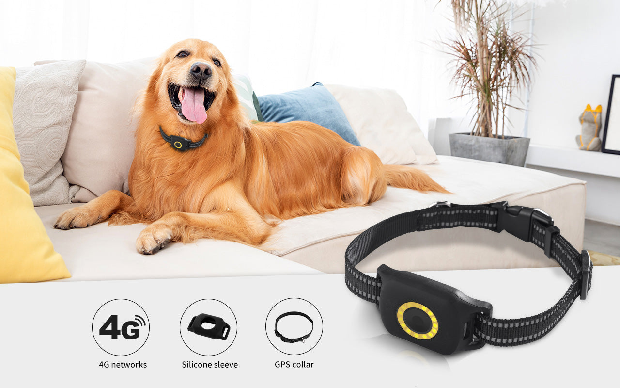 4G GPS Pet Tracker