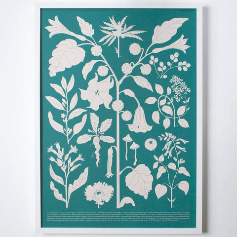 Fantastic Plants Archival Screen Print - 11:11 Supply