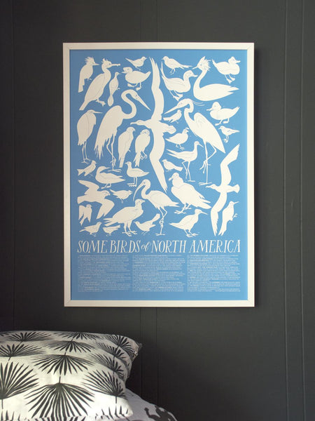 Birds of North America: Archival Screen Print - 11:11 Supply