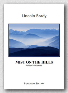 Brady-Mist on the Hill
