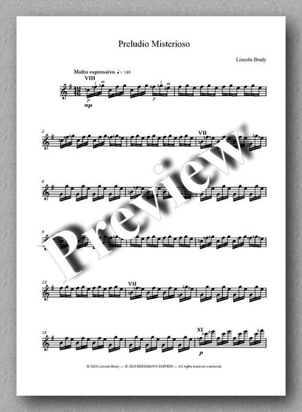 Lincoln Brady: Six Preludes, for solo guitar - preview of the music score 2