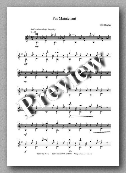 Dowlen, Five Pieces for Solo Guitar - preview of the music cover 2