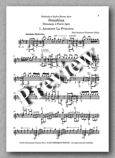 Sonatina by José Antonio Guerrero Ortiz - preview of the first movement
