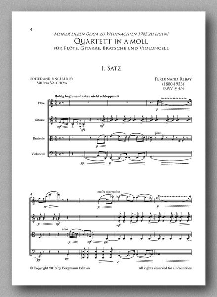 Quartet in a minor for Flute, guitar, viola and cello - preview of the score 1
