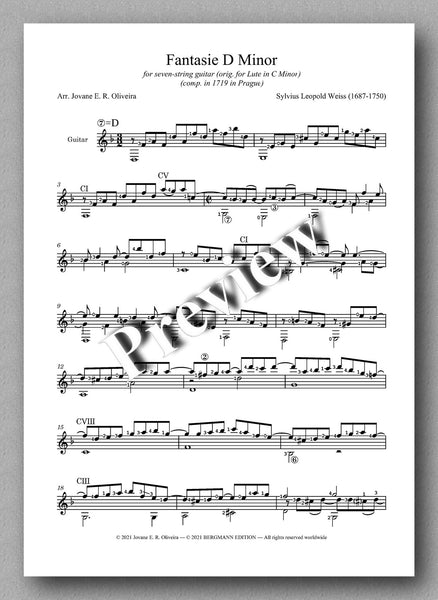 Weiss-Oliveira, Fantasie D Minor (7 strings) - music score
