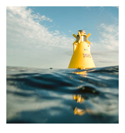 Atelier - Forty Foot Buoy 003
