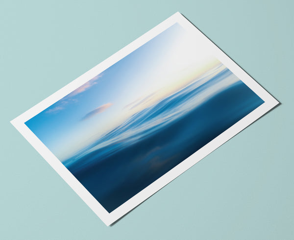 Sea Studio Postcards (pack of 6)