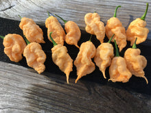 Load image into Gallery viewer, California Reaper (Pepper Seeds)