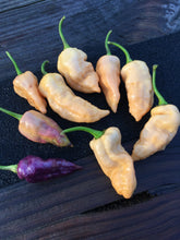 "Load image into Gallery viewer, ""Purple Ghost"" Bhut Jolokia Purple/Peach (Pepper Seeds)"