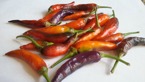 Buena Mulata (Pepper Seeds)