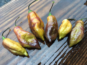 Black Tiger (Pepper Seeds)