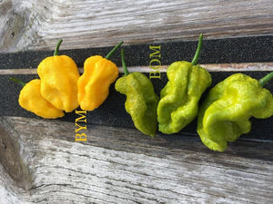 Big Yellow Mama (Pepper Seeds)