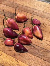 Load image into Gallery viewer, M.A.M.P. Berry (Pepper Seeds)