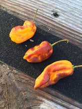Load image into Gallery viewer, Orange Horizon (Pepper Seeds)